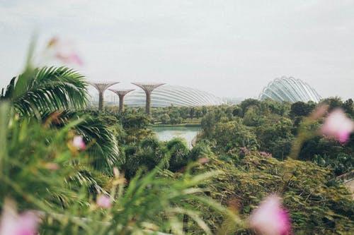 【新加坡线上换汇】跨境汇款2.0时代,新加坡华人手机上直接一键汇款 - 新加坡风景|熊猫速汇 PandaRemit