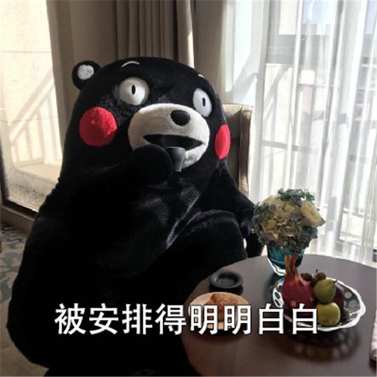 【熊猫速汇】@熊猫速汇,你们周末汇款到底能不能到账?!